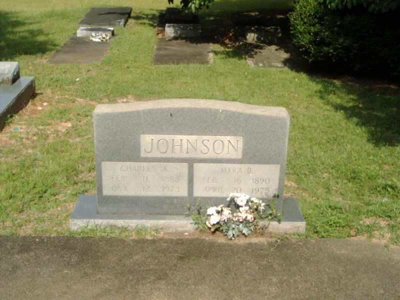 Johnson Marker